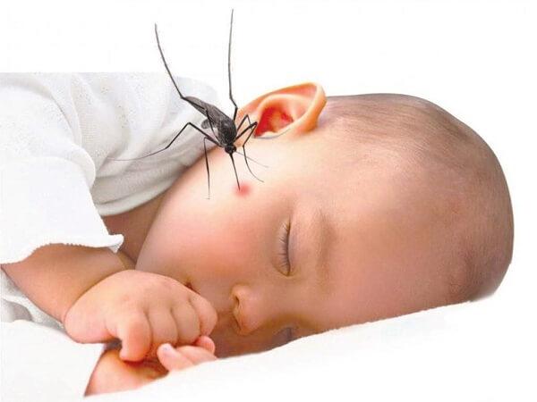 Mách mẹ 10 cách trị vết muỗi đốt cho trẻ đơn giản bằng các nguyên liệu có sẵn trong nhà